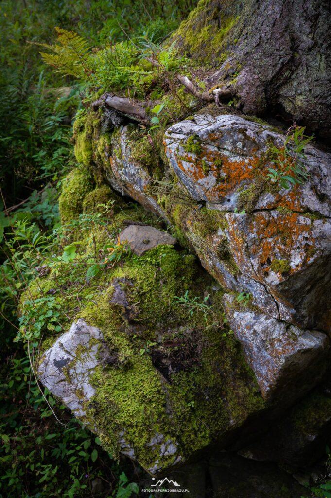 skalne-serce-tatr-DSC_7812-2.jpg